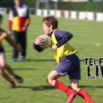 shifnal-rugby